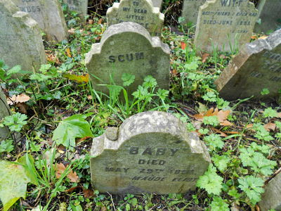 strange-names-pet-cemetery